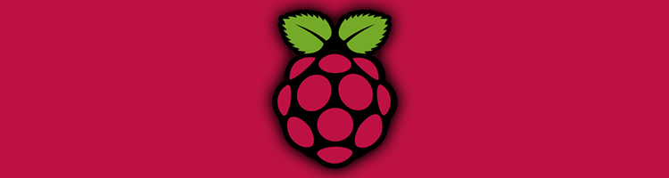 Raspberry PI header